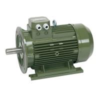 Standardised surface motors پمپ آب سائر SAER
